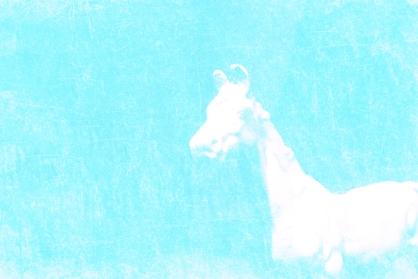 Horseplay (2)