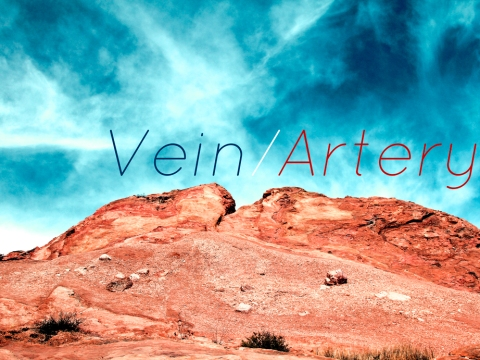 Respiration (Vein/Artery)